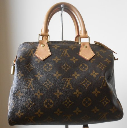 Louis Vuitton : sac Speedy 25\\n\\n30/08/2016 18:21